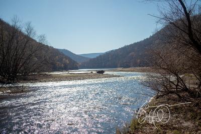 Bear Run State Park Creek Feeding Savage River