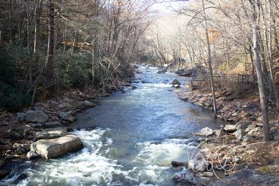 Trout Fishing Creek